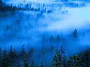 Mist in Yosemite Valley